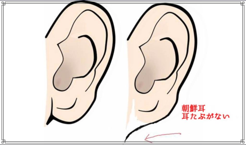 朝鮮耳のイメージ図